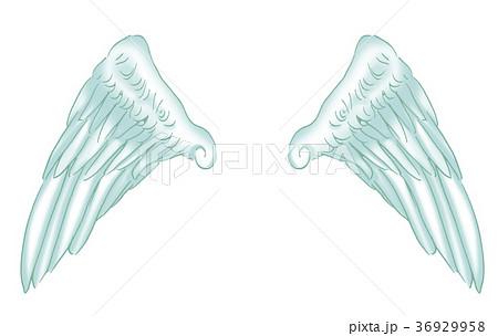 羽 天使 36929958