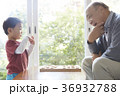 孫と遊ぶシニア 36932788