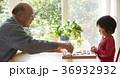 将棋をする子供とシニア 36932932