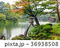兼六園 秋雨 石川県の写真 36938508