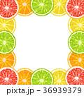 フレーム シトラス 柑橘のイラスト 36939379