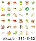 砂 プランツ 植物のイラスト 36946432