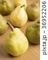 2種類の洋梨 36952206