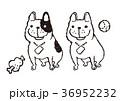 フレンチブル 36952232