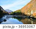 紅葉 秋 山の写真 36953067