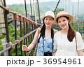 橋 架け橋 つり橋の写真 36954961