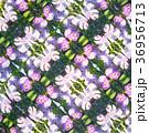 柄 パターン 花の写真 36956713