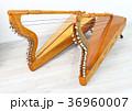 パラグアイのラテンハープ、アルパ 36960007