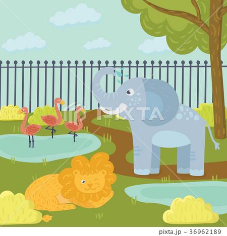 Funny cartoon animals in zoo park. Flamingos in 36962189
