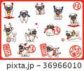 パグ 犬 戌年のイラスト 36966010