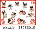 パグ 犬 戌年のイラスト 36966015