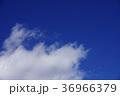 空 青空 快晴の写真 36966379