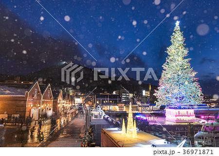 函館クリスマスファンタジー 36971871