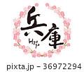 兵庫 筆文字 桜 フレーム 36972294