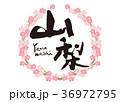 山梨 筆文字 桜 フレーム 36972795