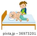 介護 清拭 お爺さんのイラスト 36973201