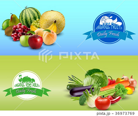 fruits and vegetables design templateのイラスト素材 36973769 pixta