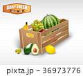 くだもの フルーツ 実のイラスト 36973776