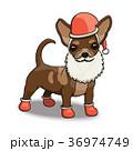 わんこ 犬 動物のイラスト 36974749