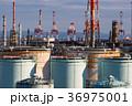 工場 工場地帯 根岸湾の写真 36975001