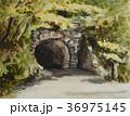 旧天城トンネル 36975145