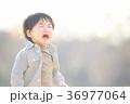 泣く子ども 36977064
