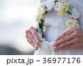 結婚/妊娠イメージ 36977176