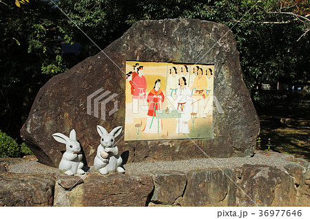 出雲大社 因幡の白ウサギ 36977646