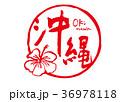 沖縄 筆文字 水彩画 ハイビスカス 36978118