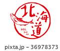 北海道 鮭 筆文字 水彩画 36978373