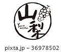 山梨 筆文字 ぶどう 水彩画 36978502