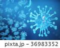 ウィルス ウイルス 病原菌のイラスト 36983352
