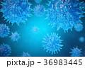 3Dイラスト バクテリア バイキンのイラスト 36983445