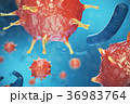 3d Illustration virus, bacteria, cell infected 36983764