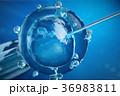 3d illustration artificial insemination 36983811