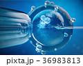 3d illustration artificial insemination 36983813