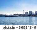 山下公園 マリンタワー 氷川丸の写真 36984846