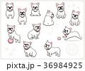 フレンチブルドッグ 犬 戌年のイラスト 36984925