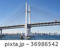 横浜ベイブリッジ ベイブリッジ 横浜の写真 36986542