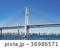 横浜ベイブリッジ ベイブリッジ 横浜の写真 36986571