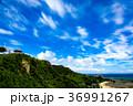 沖縄 快晴 青空の写真 36991267