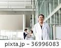 病院 医師 男性の写真 36996083