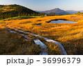 会津駒ヶ岳4 36996379