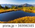 会津駒ヶ岳10 36996385