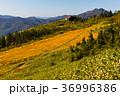 会津駒ヶ岳5 36996386