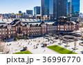 東京駅 丸の内 駅前広場の写真 36996770