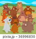 動物 くま クマのイラスト 36996830