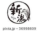 新潟 筆文字 文字のイラスト 36998609