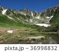 山 千畳敷カール 木曽駒ヶ岳の写真 36998832