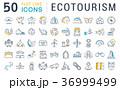 エコ アイコン イコンのイラスト 36999499